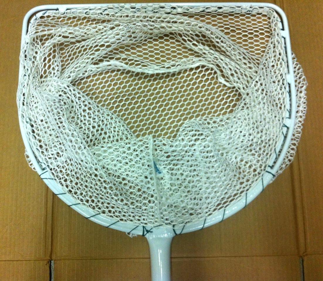 large d net